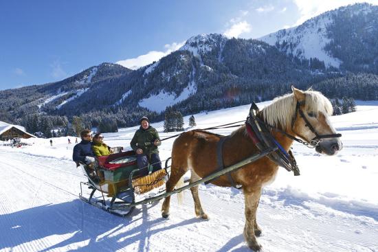 Winterurlaub in Radstadt - Pferdeschlittenfahrten